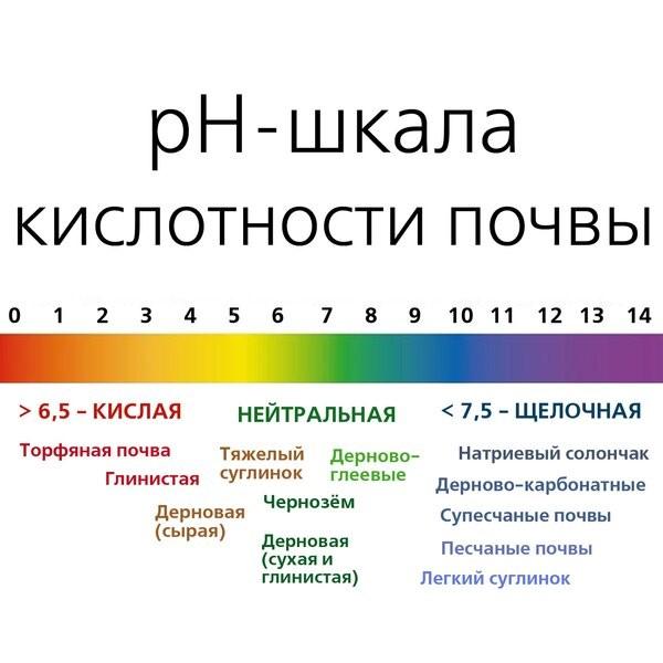 kislotnost_pochvy