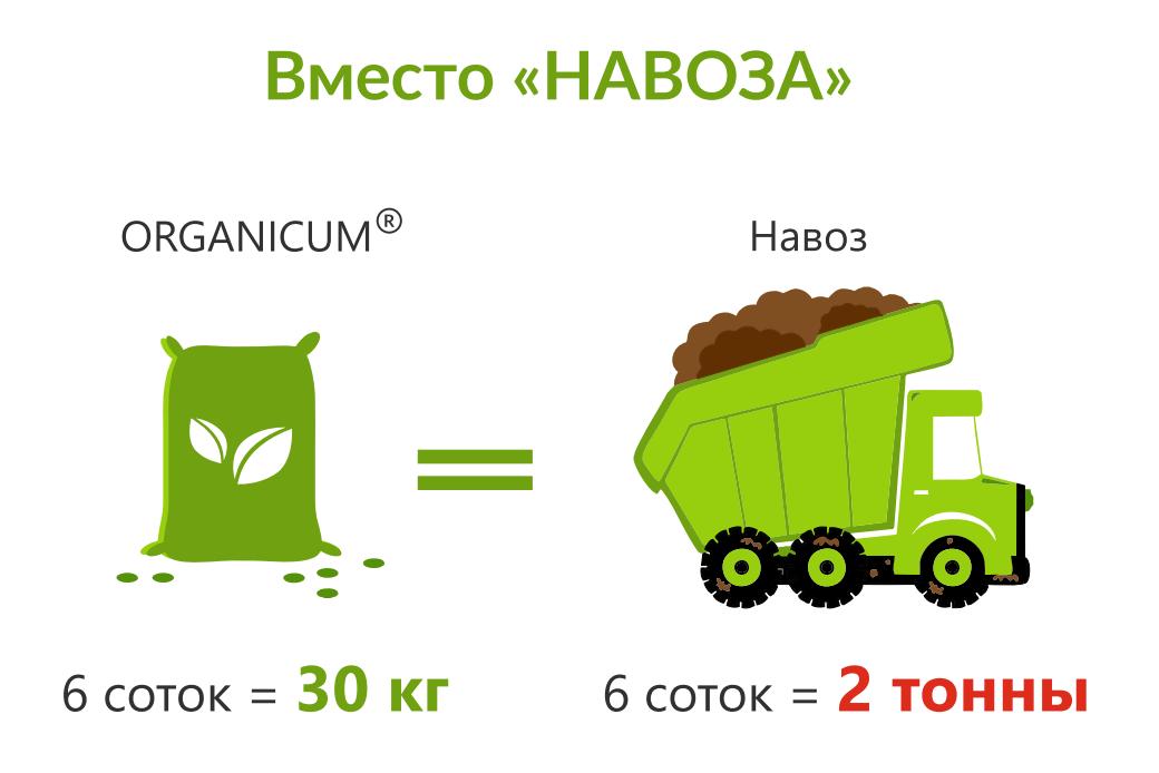 udobreniya_dlya_klubniki