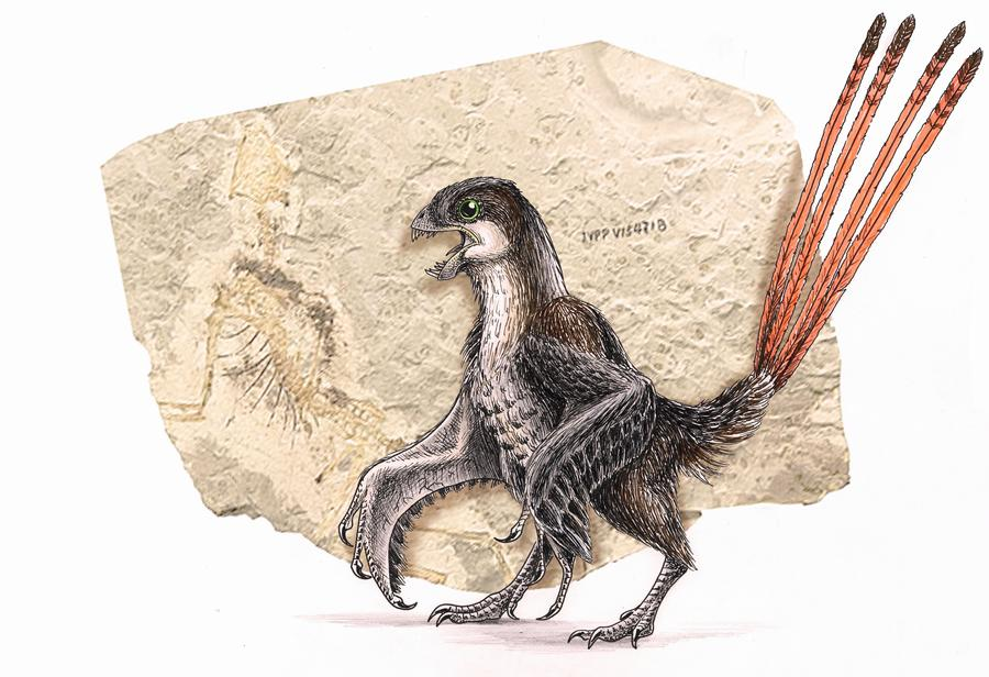 dinozavry3