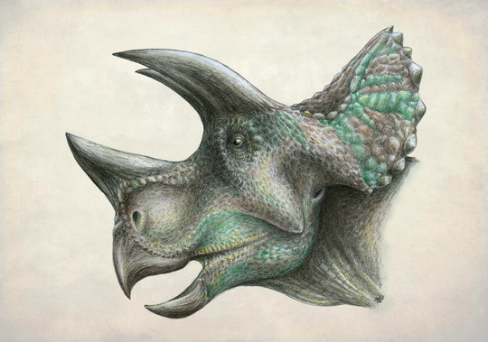 dinozavry5